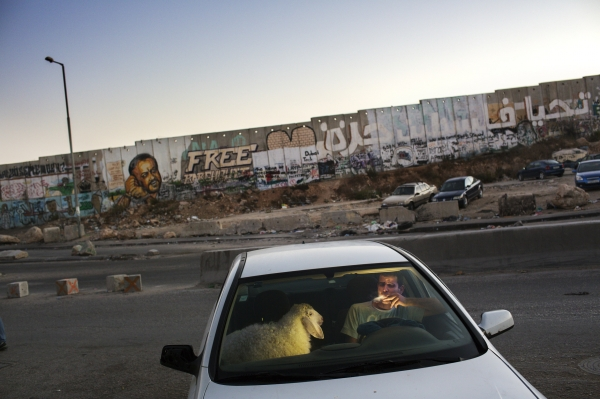 Fotoserie Jordanien - Daily Life Stories ©World Press Photo 2014 - Tanya Habjouqa